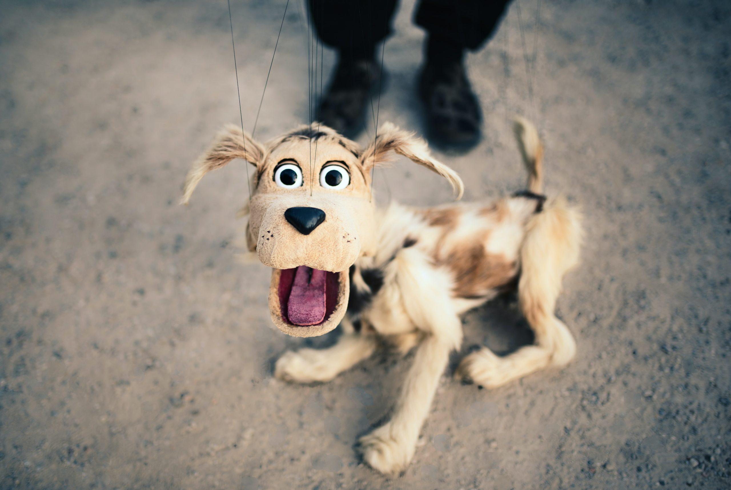 笑っ て コラ えて 犬